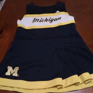 Michigan Jumper
